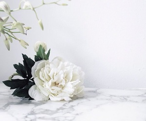 flower, marble, and white image