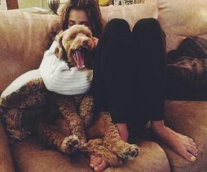 dog, home, and kiss image