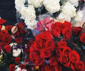 beautiful, flowers, and red image