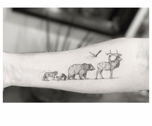 animals, simple, and arm image