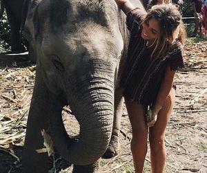 girl, animal, and elephant image