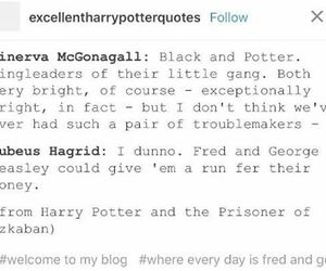 cool, funny, and harry potter image
