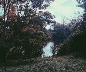 beauty, kensington, and lake image
