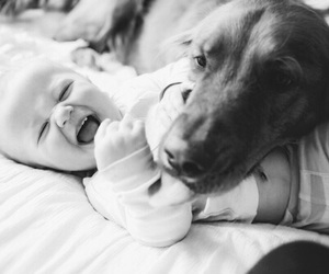 animals, black and white, and kids image