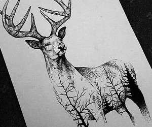 deer, drawing, and forest image
