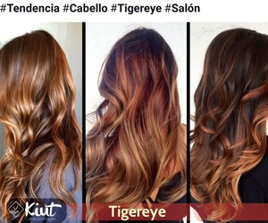 hair, cabello, and tigereye image