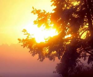 finland, three, and sunset image