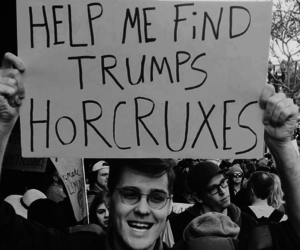 trump and harry potter image