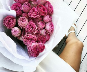 flowers, roses, and 123564 image