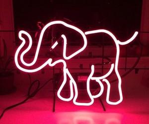 pink, elephant, and neon image