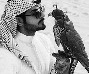 arab, hawk, and middle east image