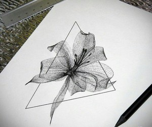 cool, draw, and flowers image