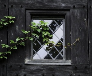 cottage, fairytale, and window image
