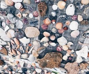 aesthetic, beach, and california image