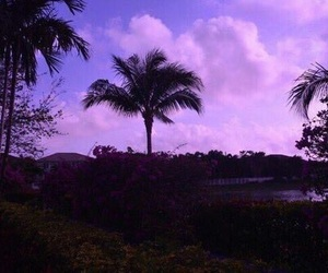 purple, sky, and aesthetic image