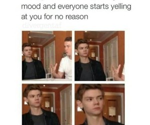 funny, true, and thomas brodie sangster image