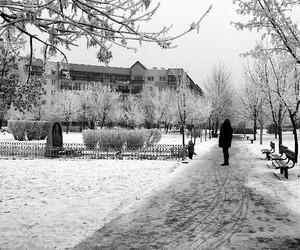 Poland, winter, and poznań image