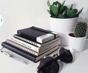 book, cactus, and plants image