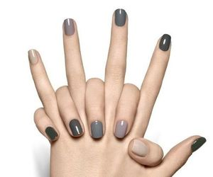 grey, manicure, and handlook image