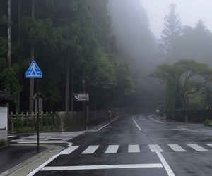 fog, pale, and road image