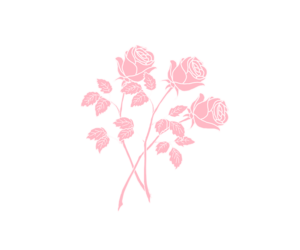 pink, png, and rose image