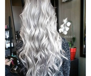 hair, grey, and silver image