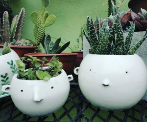 cactus, diy, and faces image