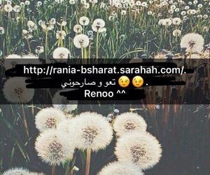 be, reno, and shy image