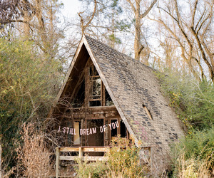 artistic, cabin, and woods image