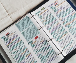 notebook, notes, and studyblr image