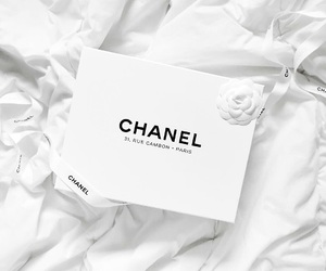 chanel, white, and luxury image