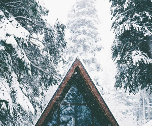 winter, cabin, and forest image