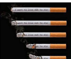 cigaret, die, and smoke image
