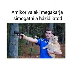 lol, magyar, and háziállat image