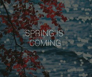 beautiful, spring, and spring is coming image