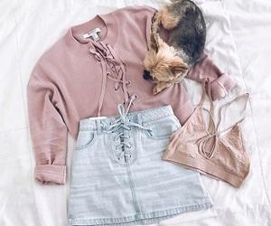 animal, t-shirt, and fashion image