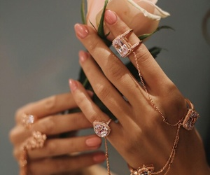 rose, nails, and rings image