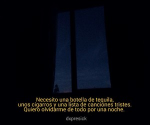 frases and tequila image