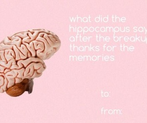 jokes, hippocampus, and puns image