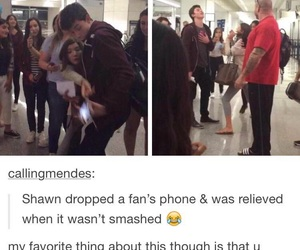 funny, cute, and shawn mendes image