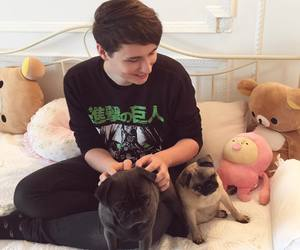 dan howell, danisnotonfire, and youtube image