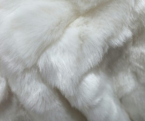 white, aesthetic, and fur image