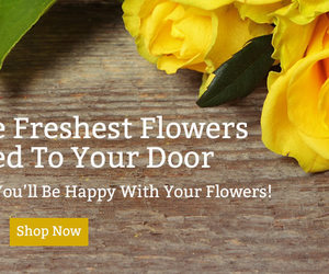 flower delivery, flower delivery online, and send flowers image