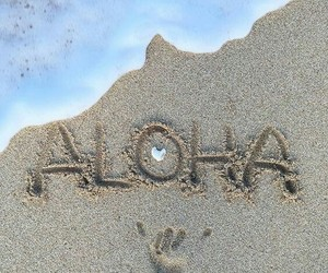beach, Aloha, and summer image