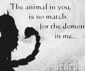 animal, demon, and scorpio image