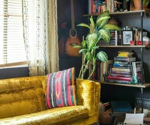 livingroom, plant, and shelves image
