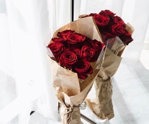 red roses, roses, and flowers image