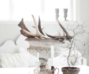 animal, horns, and magic image