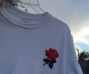 rose, aesthetic, and shirt image
