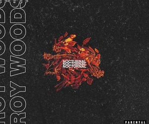 music, nocturnal, and roy woods image